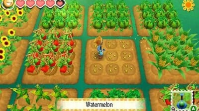 Story of Seasons Screenshot 1