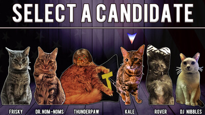 Cat President ~A More Purrfect Union~ Screenshot 3