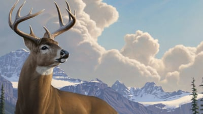 Deer Hunter Reloaded Masthead