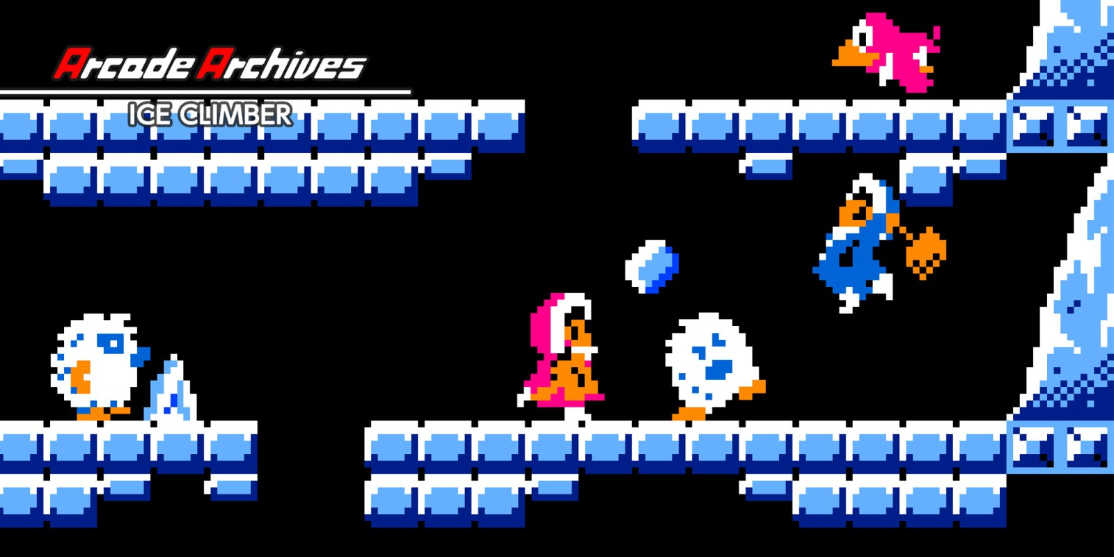 Arcade Archives VS. Ice Climber Masthead