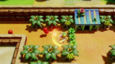 The Legend of Zelda: Link's Awakening Screenshot 2