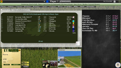 Starters Orders 7 Horse Racing Screenshot 7