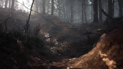 Blair Witch gameplay video — Getting lost in the Black Hills Forest