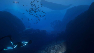 Beyond Blue is an underwater exploration game inspired by BBC's Blue Planet 2, out 2019 | PC Gamer